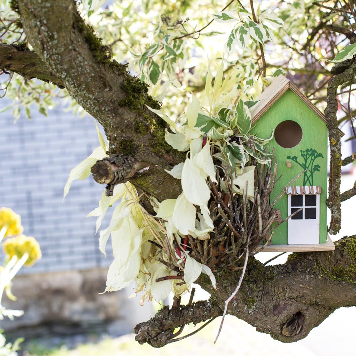Ferienwohnungen Naturzeit Vogelhaus